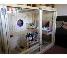 Indoor rabbit enclosures Plan