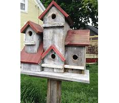 Large wooden bird houses for sale on pole Plan
