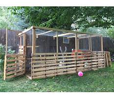 Making a chicken coop from pallets Plan