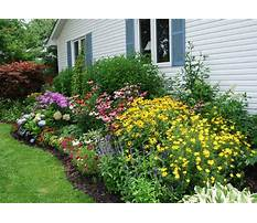 Miniature trees for small gardens Plan