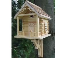 Natural bird house plans Plan