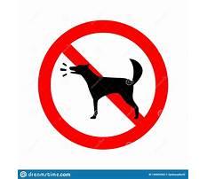 No barking dogs Plan