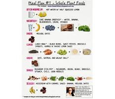 No fruit vegan diet Plan