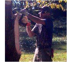 Octagon picnic table.aspx Plan