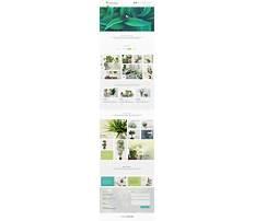 Online plants shopping Plan