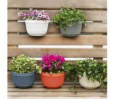 Outdoor planter ideas for spring Plan