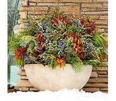 Outdoor pots for winter Plan