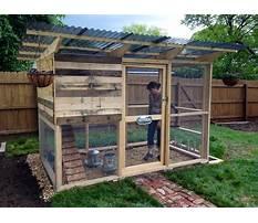 Pallet chicken coop pictures Plan
