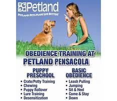 Pensicola dog training facility.aspx Plan