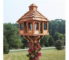 Plans for birdhouses and feeders Plan