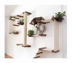 Plans for cat shelves Plan
