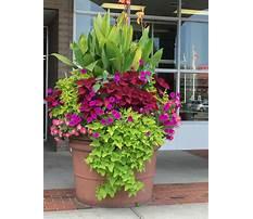 Plant pots outdoor Plan
