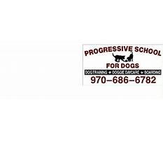 Progressive dog training greeley co Plan