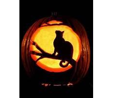 Pumpkin cat carving ideas Plan