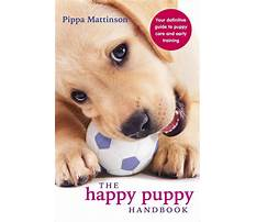 Puppy biting training Plan