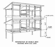 Rabbit building designs Plan