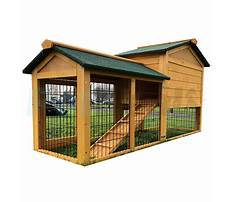 Rabbit hutch company reviews Plan