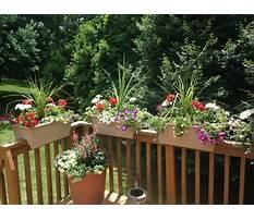 Railing flower boxes uk Plan