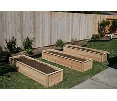 Raised garden bed cedar.aspx Plan