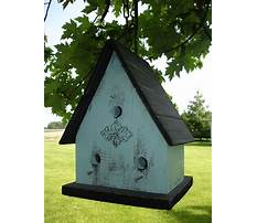 Scrap wood birdhouse plans Plan