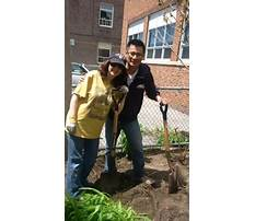 Sheds and fencing direct.aspx Plan