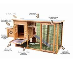 Small chicken coop kit Plan