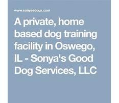Sonya dog training oswego il.aspx Plan