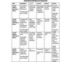 South beach diet pressure cooker recipes Plan