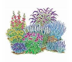 Spring flowering garden trees Plan