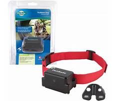 Stubbon dog training shock vibration collar.aspx Plan