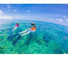 Tea table key snorkeling in florida Plan