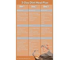 The 3 day diet Plan