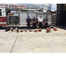 Therapy dog training az Plan