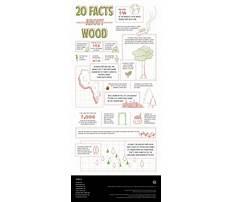Timber wood facts.aspx Plan