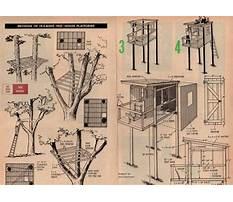 Treehouse design peterborough Plan