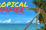 Upbeat Tropical Music