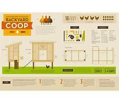Urban chicken coop plans free Plan