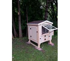 Urban farmer chicken coops Plan