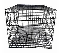 Ware rabbit hutch runs near Plan