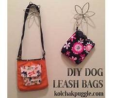 What is a training leash for dogs.aspx Plan