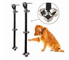 Which bell for dog training Plan