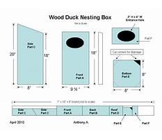 Wood duck box plans free Plan